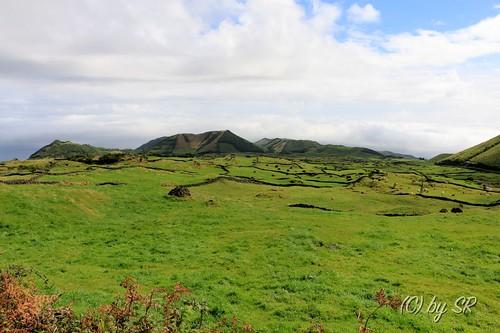 Azores2014_0629