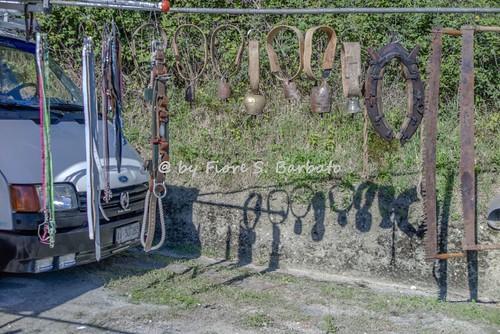 Terranova Fossaceca, fraz. di Arpaise (BN), 2016, Fiera autunnale di attrezzature agro-forestali.