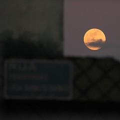 Do terraço de minha casa, olha só quem apareceu!! Seja bem-vinda, sua linda bela #lua #moon #cabodesantoagostinho