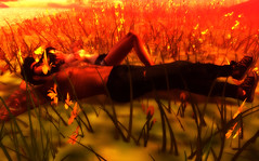 Fall Serenity by dy secondlife