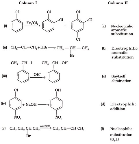 Class 12 Important Questions for Chemistry – Haloalkanes and