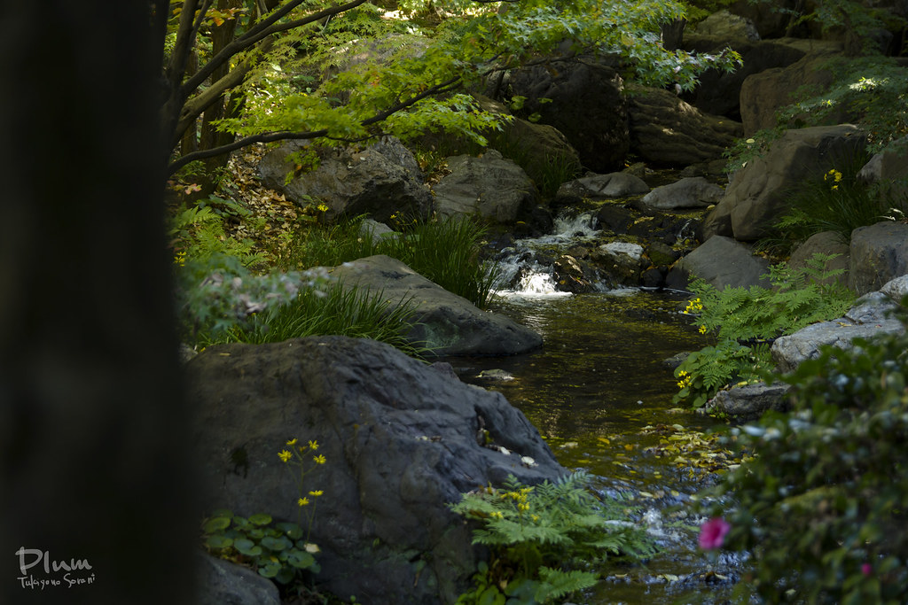 Shirotori Garden-15