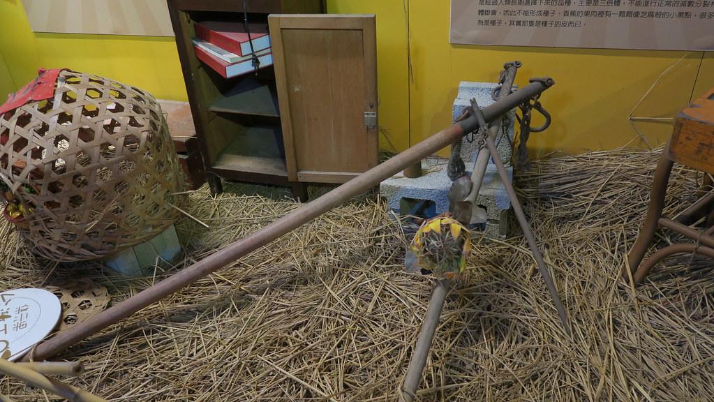 集集山蕉文化館 (11)
