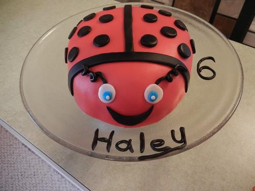May 2 2013 Cake (2)