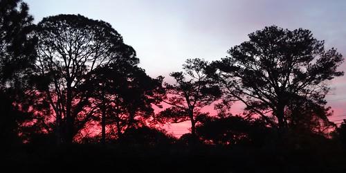 mobile sunrise landscape al 2013 visitationmonastery