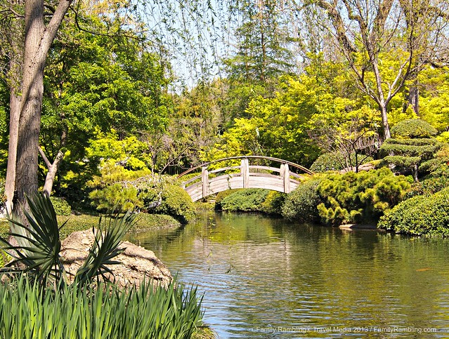 Moon Bridge at Fort Worth Japanses Garden