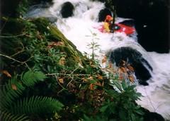 Kayaking: Tryweryn (19-Nov-04) Image