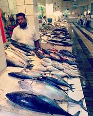 سوق السمك في المباركية #الكويت