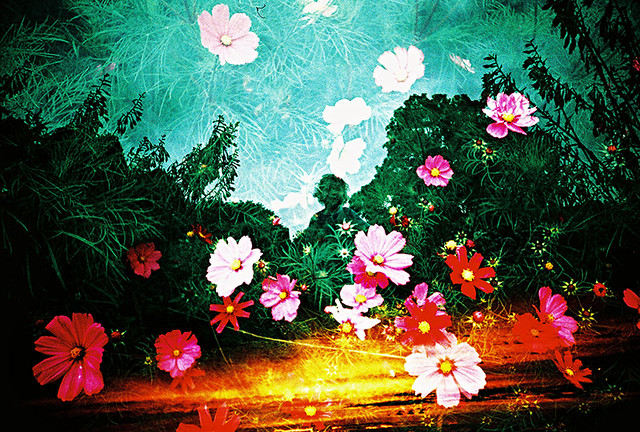 Lomo – the girl with the flowers in her sunset