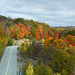The Splender of Autumn in Ontario! by (nature_photonutt) Sue