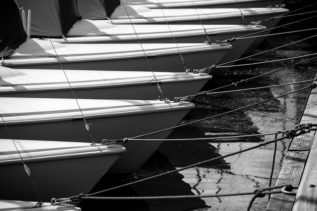 Sailing Boats - Tuborg Harbor