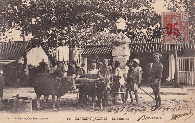 CAP SAINT-JACQUES - La Fontaine - Attelage de boeufs