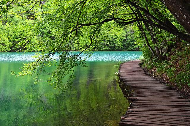 Path on Kaluderovac Lake, Plitvice Lakes National Park, Croatia