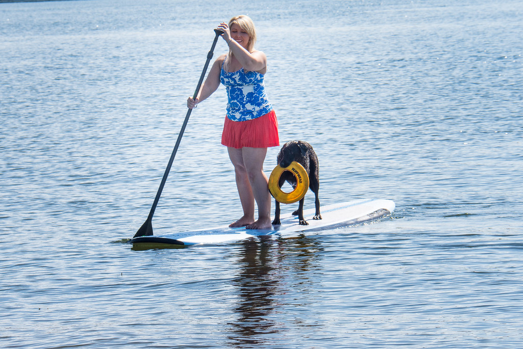 Stand up paddleboarding with a dog