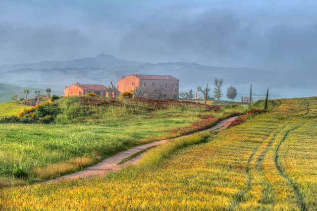Farmhouse In the Mist By the Dirt Road