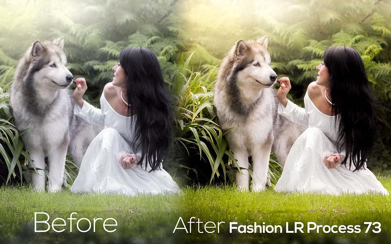 Fashion LR Presets 57