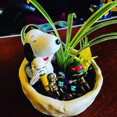 #downtowntacoma #tacomawa #washingtonhistorymuseum #snoopy #plant #