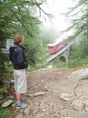 The Montenvers Train Image