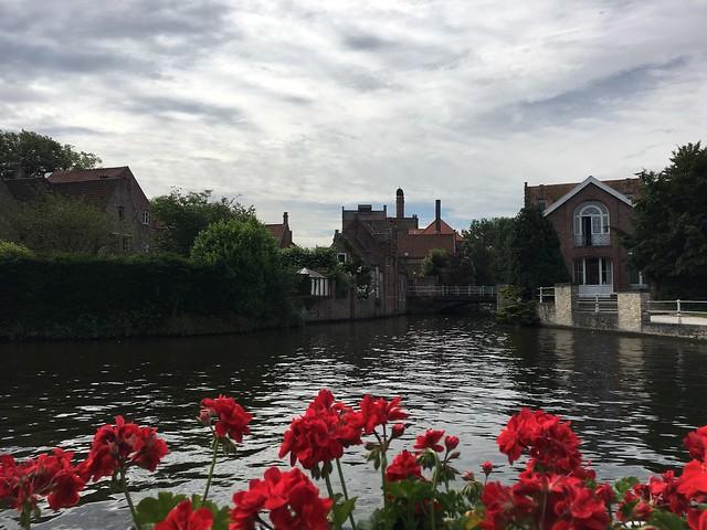 Belgium (384)