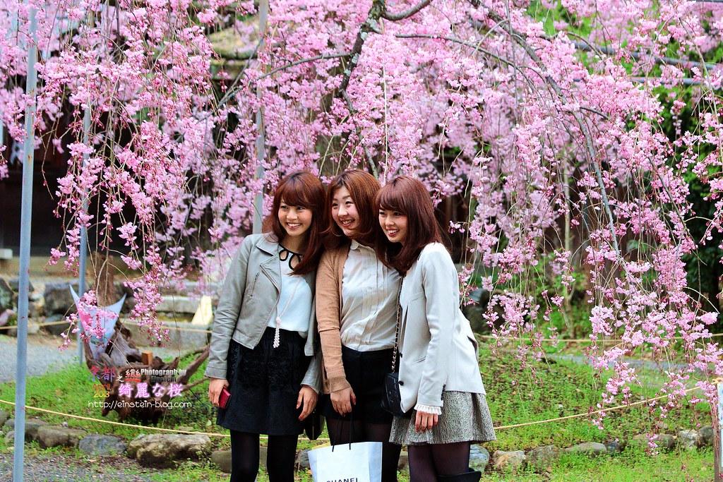 2013-04-03-15h10m39IMG_0976_cr