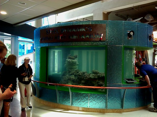 Center In The Square Aquariums