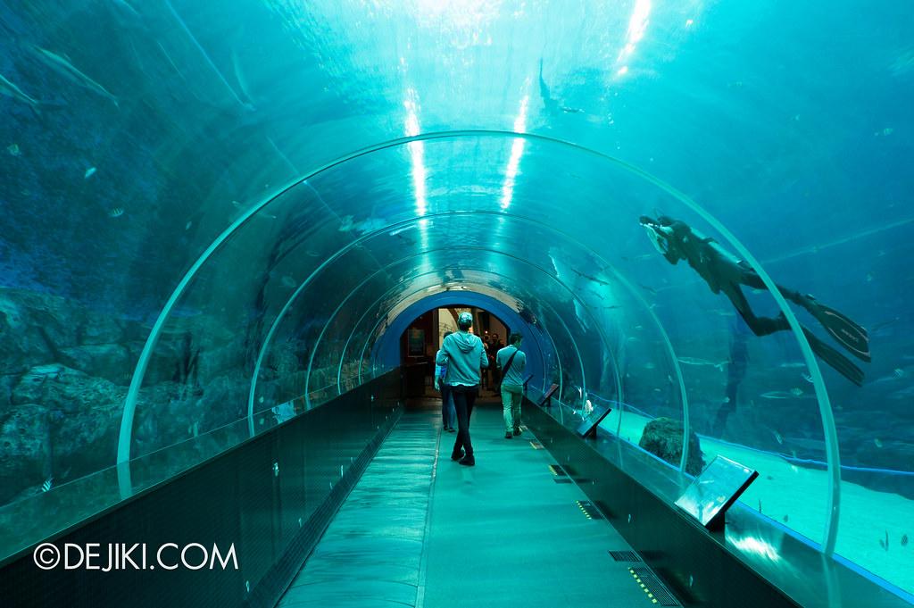 Marine Life Park Singapore - S.E.A. Aquarium - Exit Tube