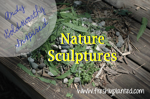 Nature Sculptures