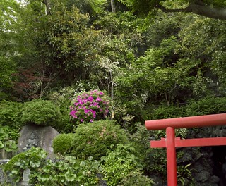 The syncretism of Buddhism and Shinto