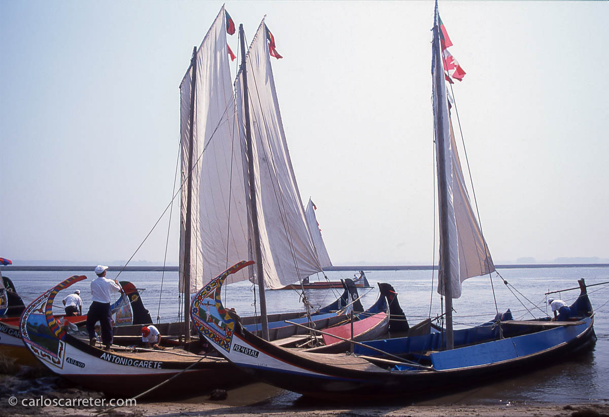 Barcos tradicionales de pesca en el entorno de la ría de Aveiro
