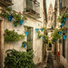 Callejon de las flores. Córdoba. by Zu Sanchez