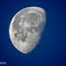lunar by Alain Bachellier