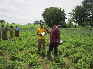 Researcher and Borlaug Fellow Issah Sugri (right) with a farmer