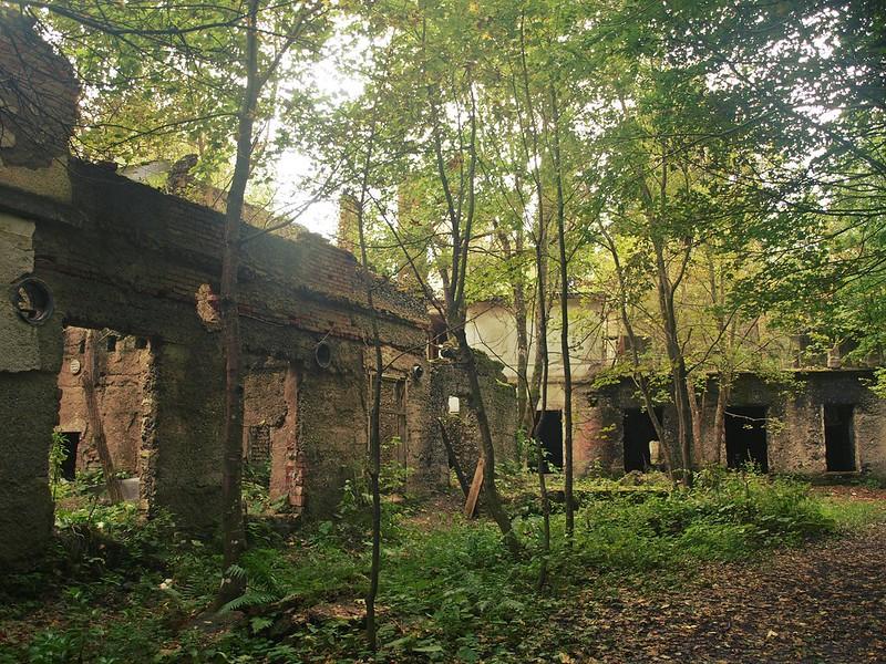 Brestovac Sanatorium (7)