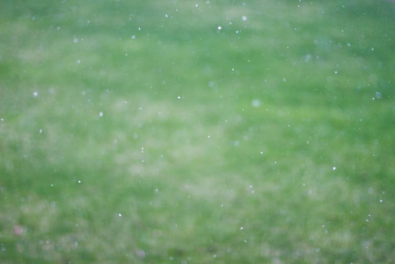 May 3, 2013 Snow