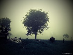 prasetyoikwan posted a photo:	Fog at Indomuro Mine Site