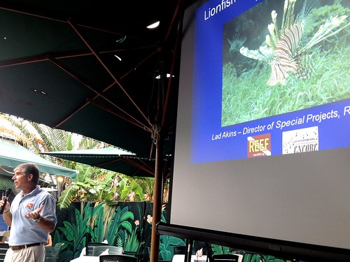 Lionfish Dinner Event in Key Largo