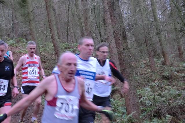 guisborough woods 271211 006 (640x425)
