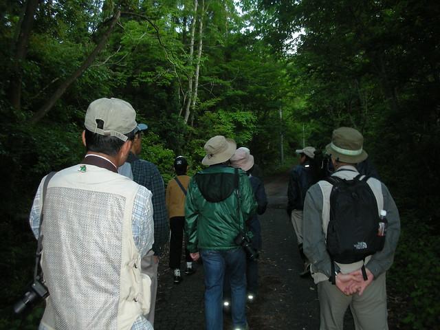 木陰はまだ薄暗い龍頭山.耳を澄ませてすすむ参加者.