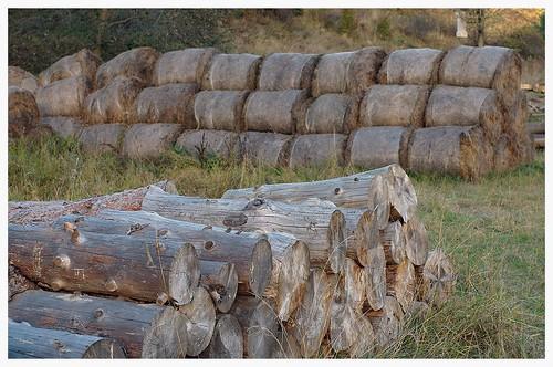 Woodpiles & haystacks