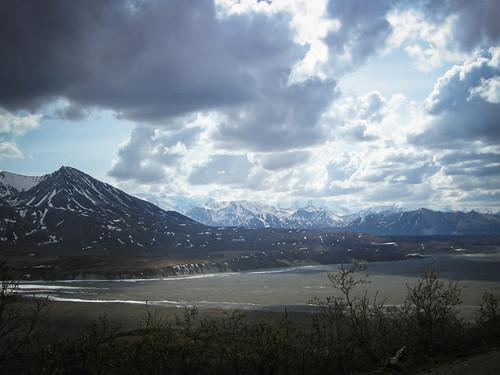 Denali Alaska8