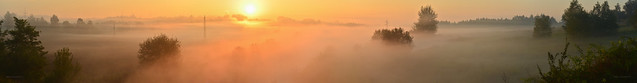 Autumn is here - foggy panorama