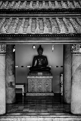 Image of buddha at the end of walk way. Low key style.