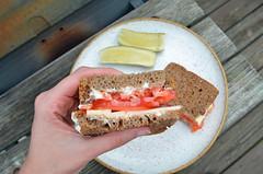 Tomato Sandwich 08.13.16