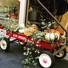 Another beautiful fall day at Idea Chíc in Denver! 🎃❤🍂 . . . #redwagon #fallcolors #pumpkin ##windowdisplay #coloradomade #5280 #Denver #fall #ideachic