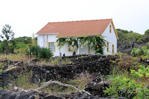 Azores2014_0560