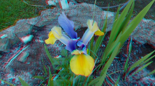 3D Anaglyph Shots-Red-Cyan Glasses Required