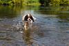 Max makes a splash