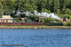 "GWR 7800 Class: 7802 ""Bradley Manor"""