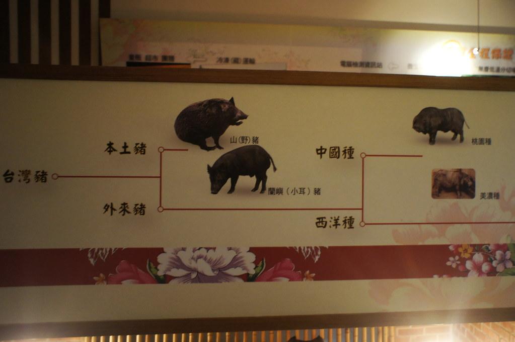 南投市香里活力豬品牌文化館 (8)
