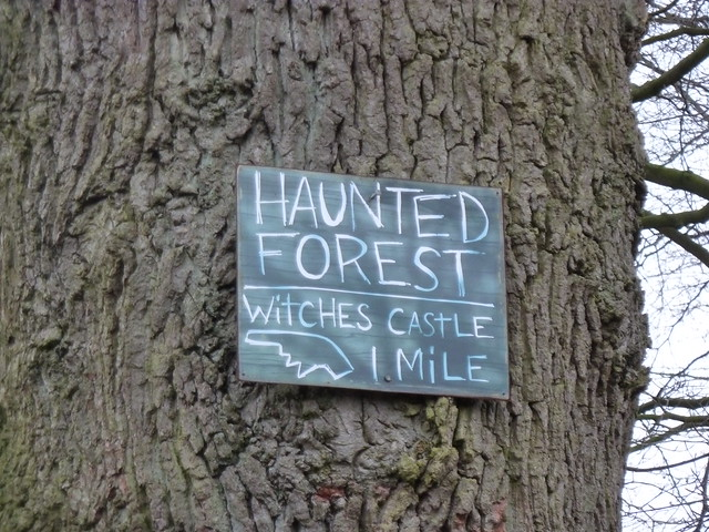 Haunted Forest and Witches Castle 1 mile